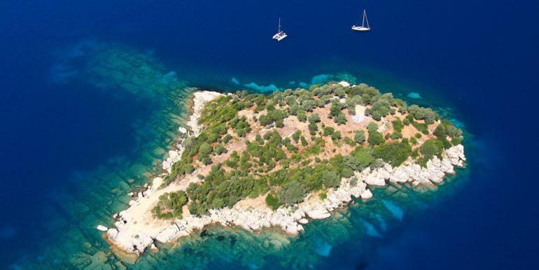 island - 9811. (12)