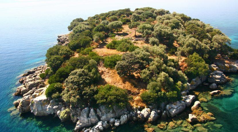 island - 9811. (9)
