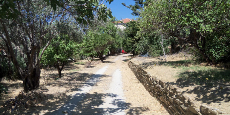 Andros-10177. (3)