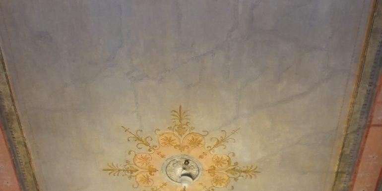 Psirri- 11569 (17)