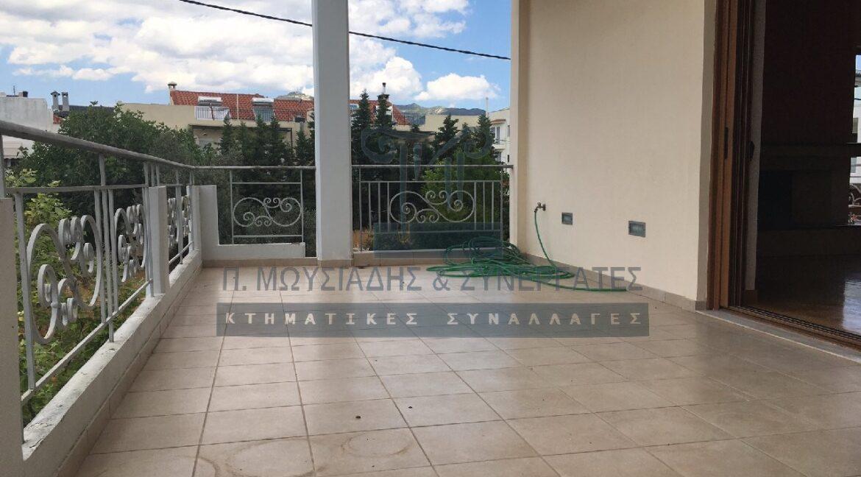 wm_Agia Paraskevi- 5333 (4)