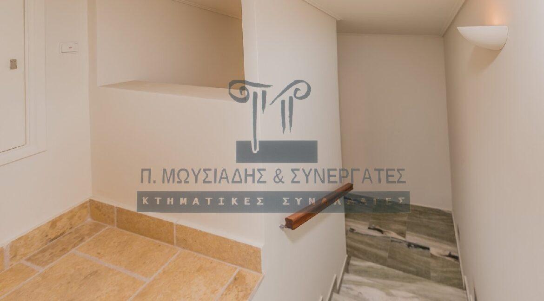 wm_Zakynthos- 12423 (19)